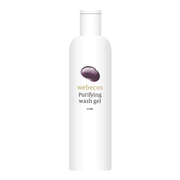 Purifying_washgel_125ml[1]
